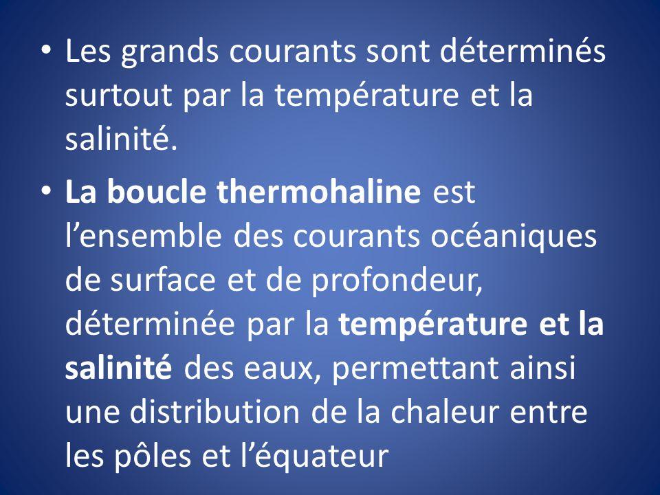 Les grands courants sont déterminés surtout par la température et la salinité. La boucle thermohaline est lensemble des courants océaniques de surface