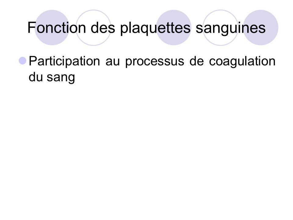Fonction des plaquettes sanguines Participation au processus de coagulation du sang