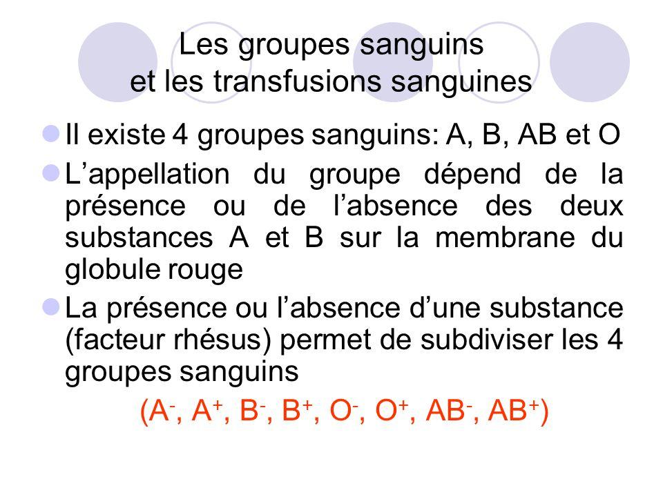 Les groupes sanguins et les transfusions sanguines Il existe 4 groupes sanguins: A, B, AB et O Lappellation du groupe dépend de la présence ou de labs