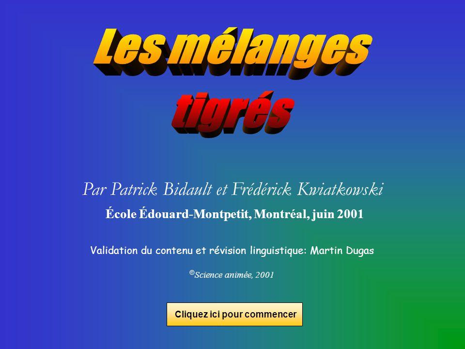 Par Patrick Bidault et Frédérick Kwiatkowski École Édouard-Montpetit, Montréal, juin 2001 Validation du contenu et révision linguistique: Martin Dugas Science animée, 2001 Cliquez ici pour commencer