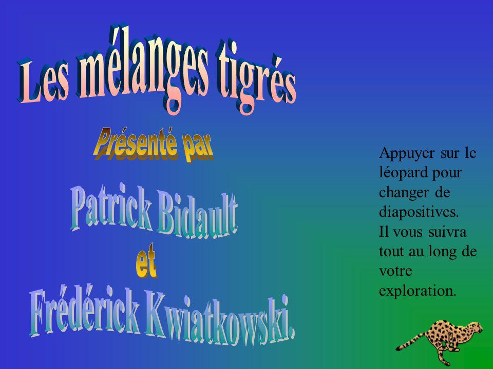 Par Patrick Bidault et Frédérick Kwiatkowski École Édouard-Montpetit, Montréal, juin 2001 Validation du contenu et révision linguistique: Martin Dugas