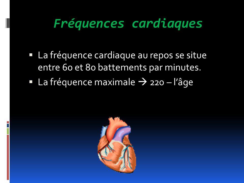 Fréquences cardiaques La fréquence cardiaque au repos se situe entre 60 et 80 battements par minutes. La fréquence maximale 220 – lâge