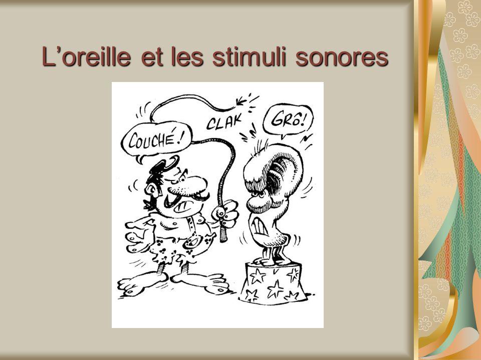 Loreille et les stimuli sonores