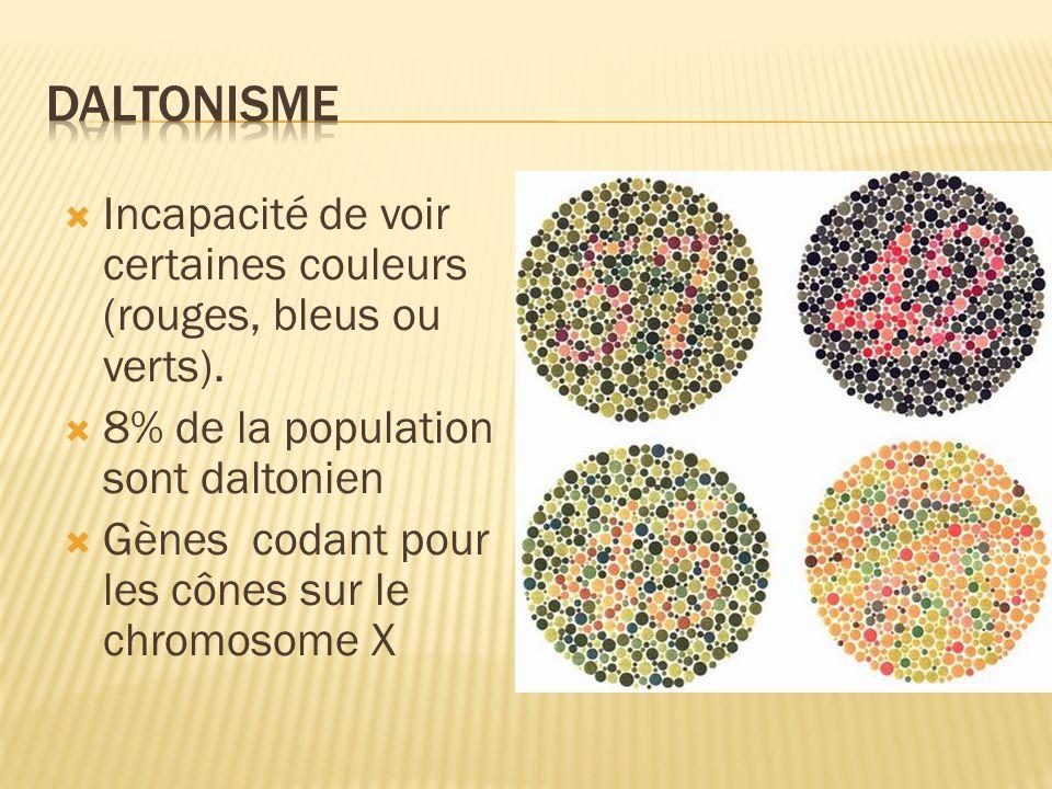 Incapacité de voir certaines couleurs (rouges, bleus ou verts). 8% de la population sont daltonien Gènes codant pour les cônes sur le chromosome X