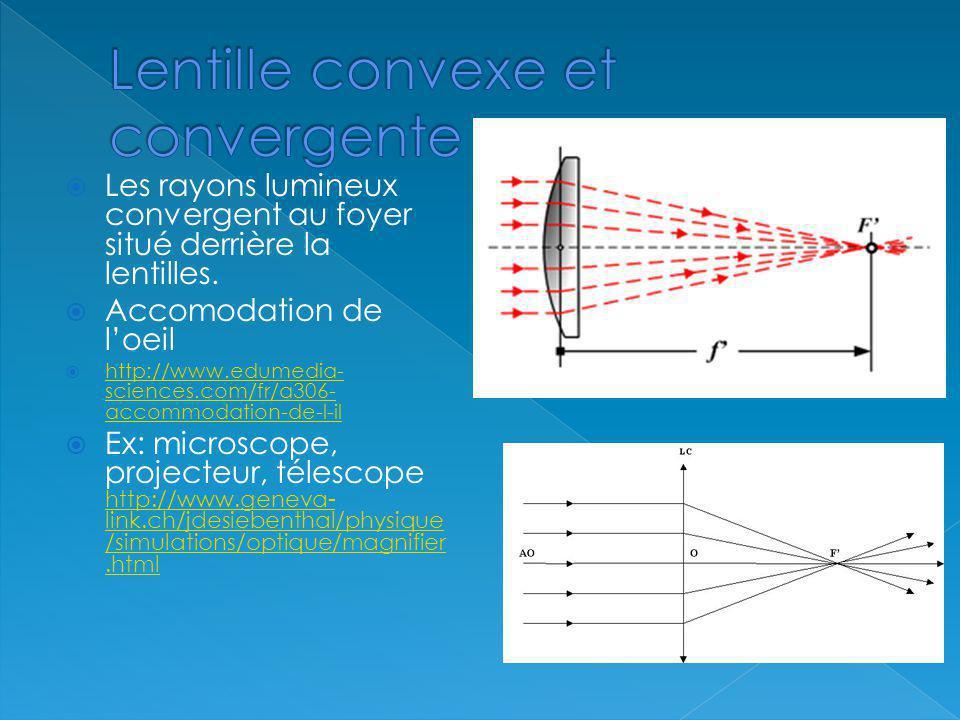 Les rayons lumineux convergent au foyer situé derrière la lentilles. Accomodation de loeil http://www.edumedia- sciences.com/fr/a306- accommodation-de