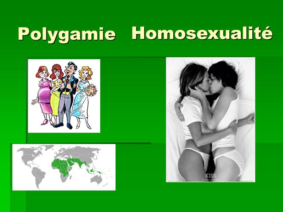 Polygamie Homosexualité
