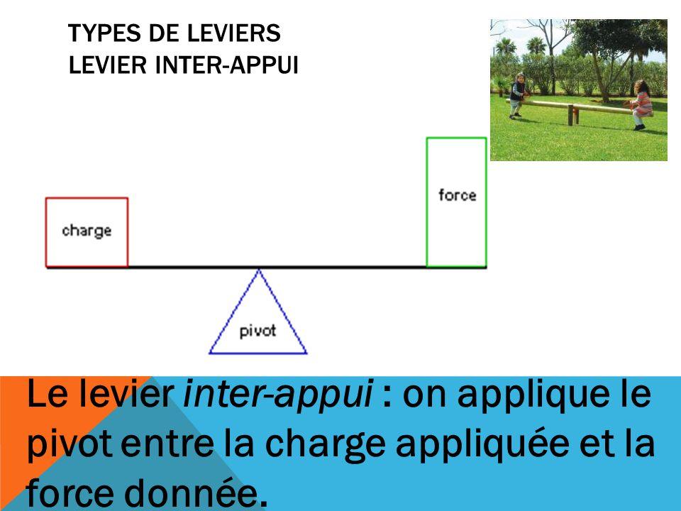 TYPES DE LEVIERS LEVIER INTER-APPUI Le levier inter-appui : on applique le pivot entre la charge appliquée et la force donnée.