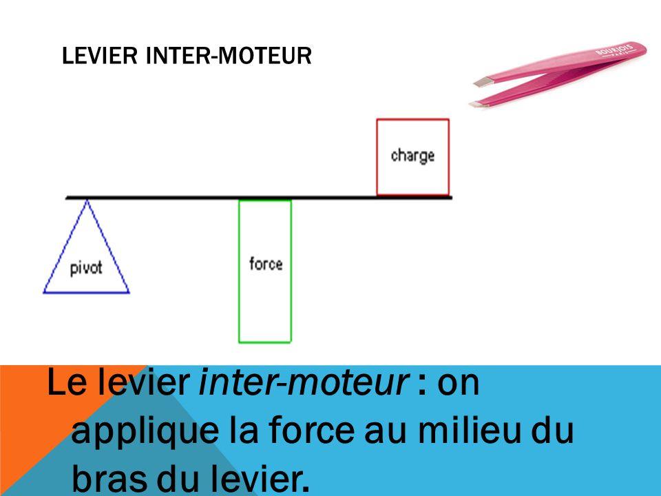 LEVIER INTER-MOTEUR Le levier inter-moteur : on applique la force au milieu du bras du levier.