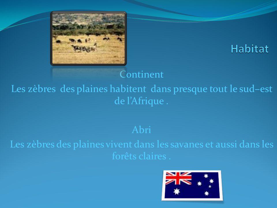 Continent Les zèbres des plaines habitent dans presque tout le sud–est de lAfrique.
