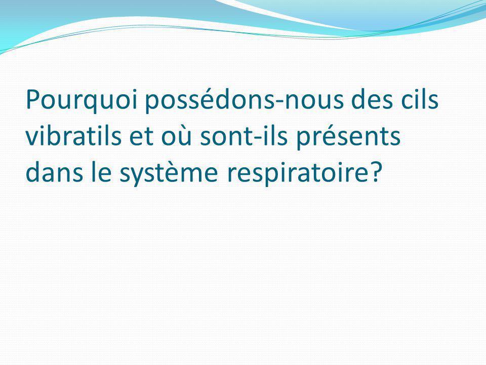 Pourquoi possédons-nous des cils vibratils et où sont-ils présents dans le système respiratoire?