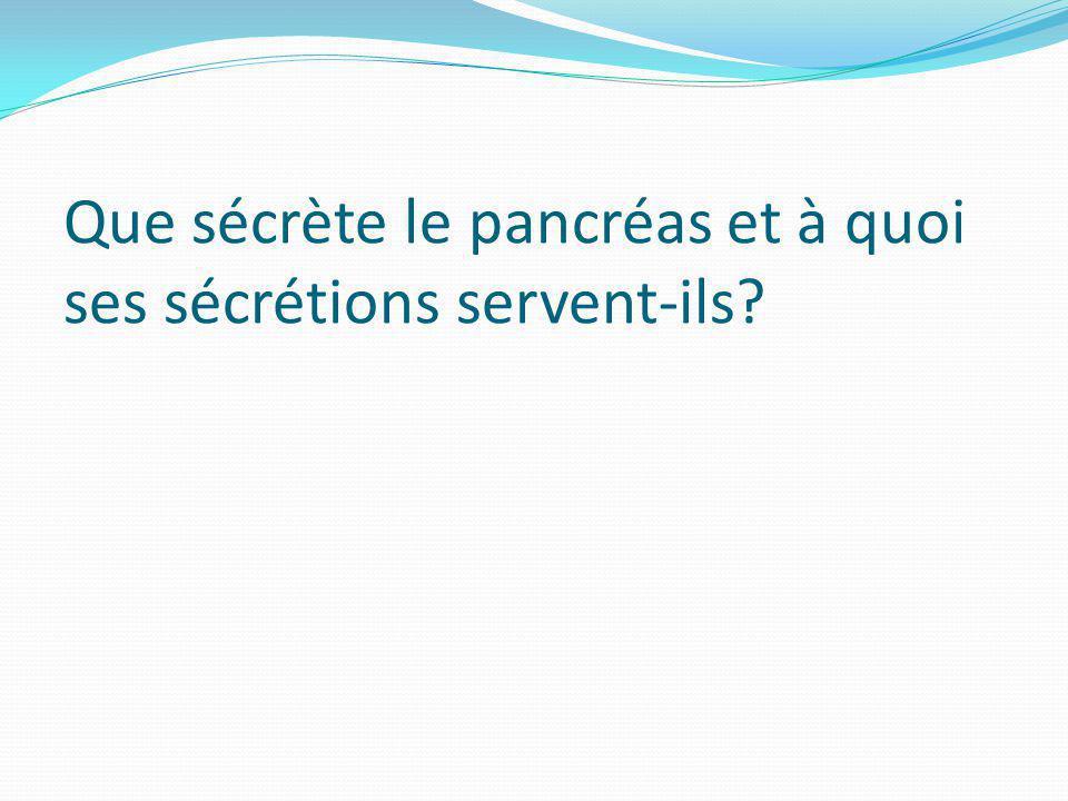 Que sécrète le pancréas et à quoi ses sécrétions servent-ils?