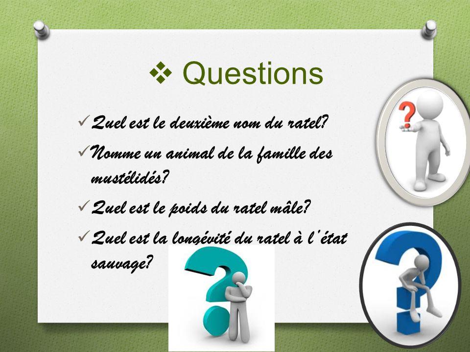 Questions Quel est le deuxième nom du ratel? Nomme un animal de la famille des mustélidés? Quel est le poids du ratel mâle? Quel est la longévité du r
