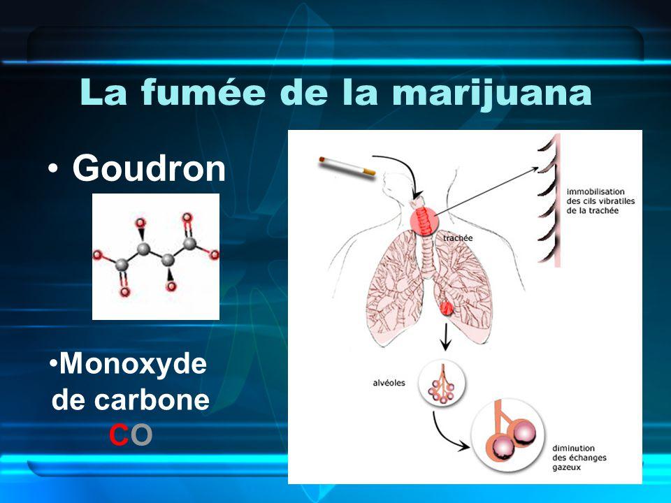 La fumée de la marijuana Goudron Monoxyde de carbone CO