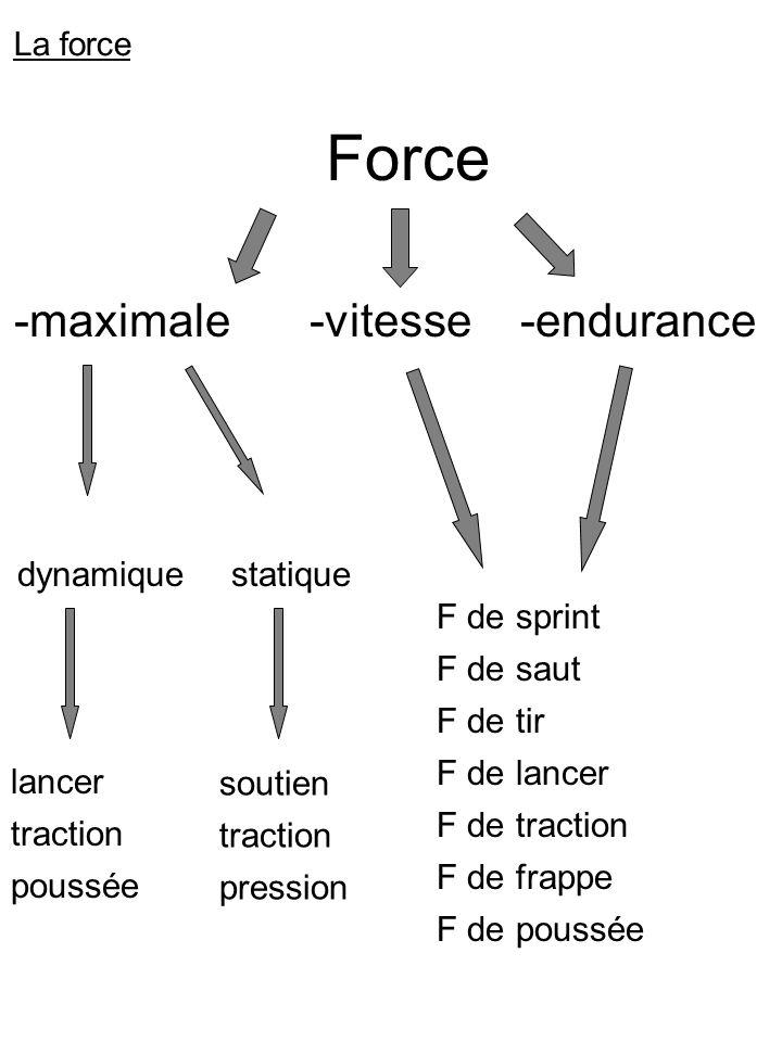 Force -maximale-vitesse-endurance dynamiquestatique lancer traction poussée soutien traction pression F de sprint F de saut F de tir F de lancer F de traction F de frappe F de poussée La force