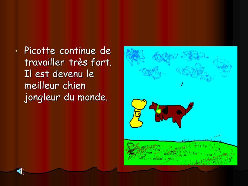 Picotte continue de travailler très fort. Il est devenu le meilleur chien jongleur du monde. Picotte continue de travailler très fort. Il est devenu l