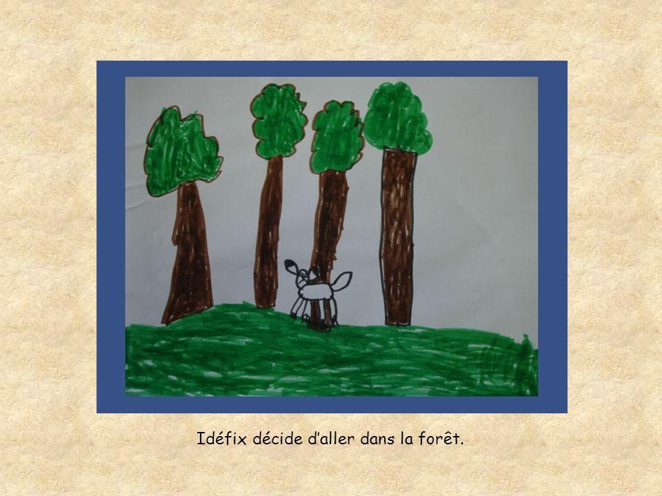 Idéfix décide daller dans la forêt.