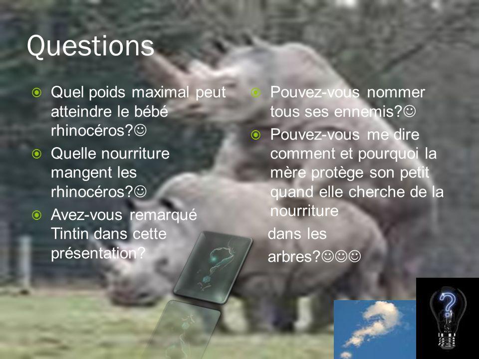 ` Quel poids maximal peut atteindre le bébé rhinocéros? Quelle nourriture mangent les rhinocéros? Avez-vous remarqué Tintin dans cette présentation? P