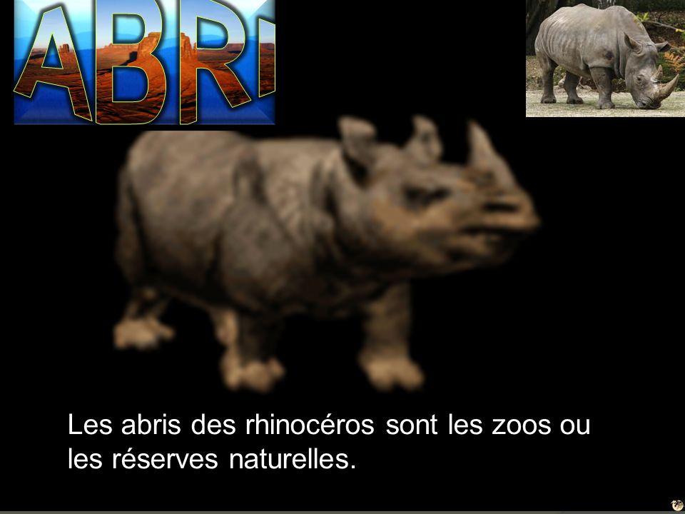 Les abris des rhinocéros sont les zoos ou les réserves naturelles.
