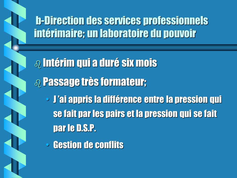 b-Direction des services professionnels intérimaire; un laboratoire du pouvoir b-Direction des services professionnels intérimaire; un laboratoire du