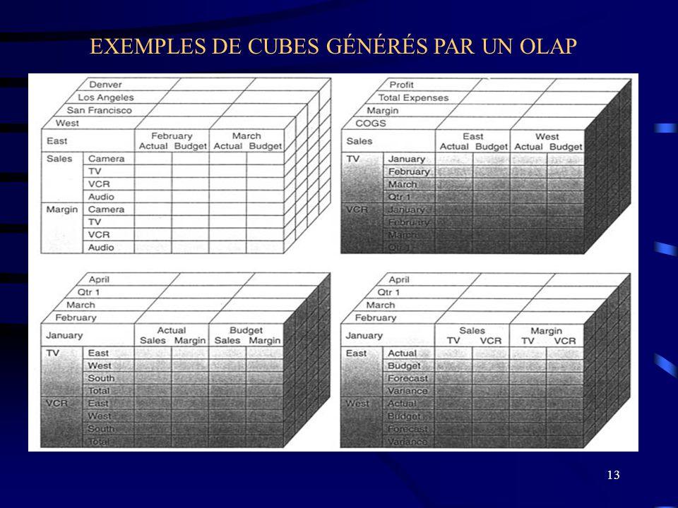 13 EXEMPLES DE CUBES GÉNÉRÉS PAR UN OLAP