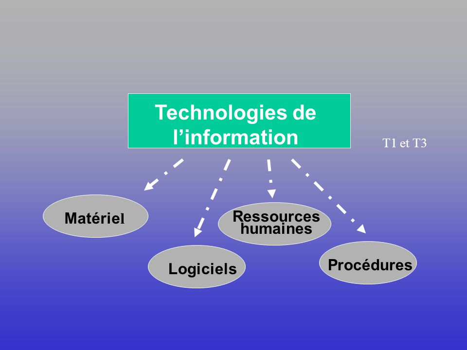 Les technologies de linformation de gestion (TIG)