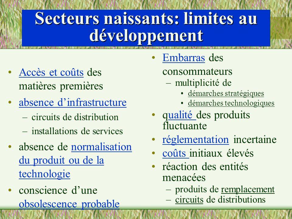 Secteurs naissants: limites au développement Accès et coûts des matières premières absence dinfrastructure –circuits de distribution –installations de