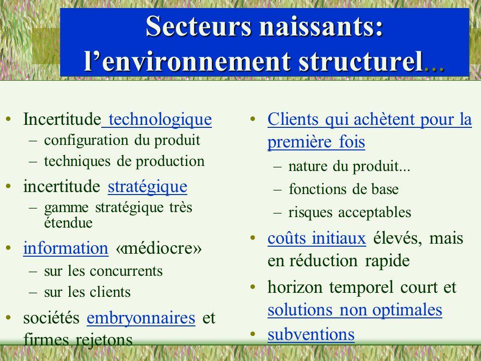 Secteurs naissants: lenvironnement structurel... Incertitude technologique –configuration du produit –techniques de production incertitude stratégique