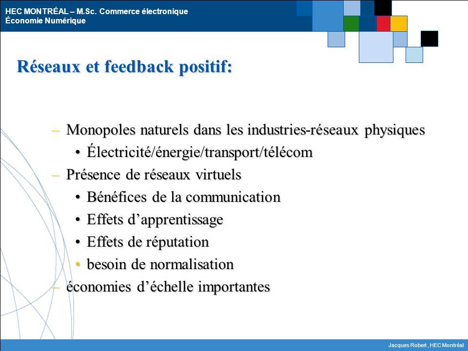 HEC MONTRÉAL – M.Sc. Commerce électronique Économie Numérique Jacques Robert, HEC Montréal Réseaux et feedback positif: –Monopoles naturels dans les i
