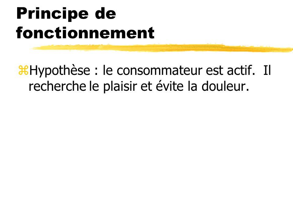 Principe de fonctionnement zHypothèse : le consommateur est actif. Il recherche le plaisir et évite la douleur.