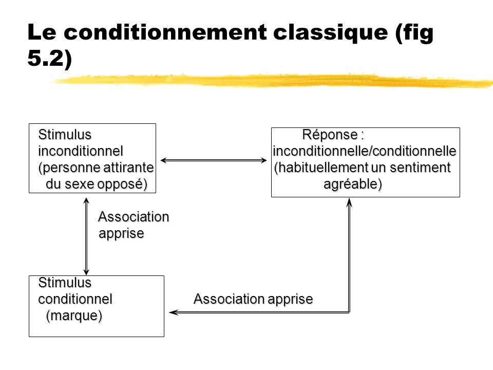 Le conditionnement classique (fig 5.2) Stimulus Réponse : inconditionnel inconditionnelle/conditionnelle (personne attirante (habituellement un sentim