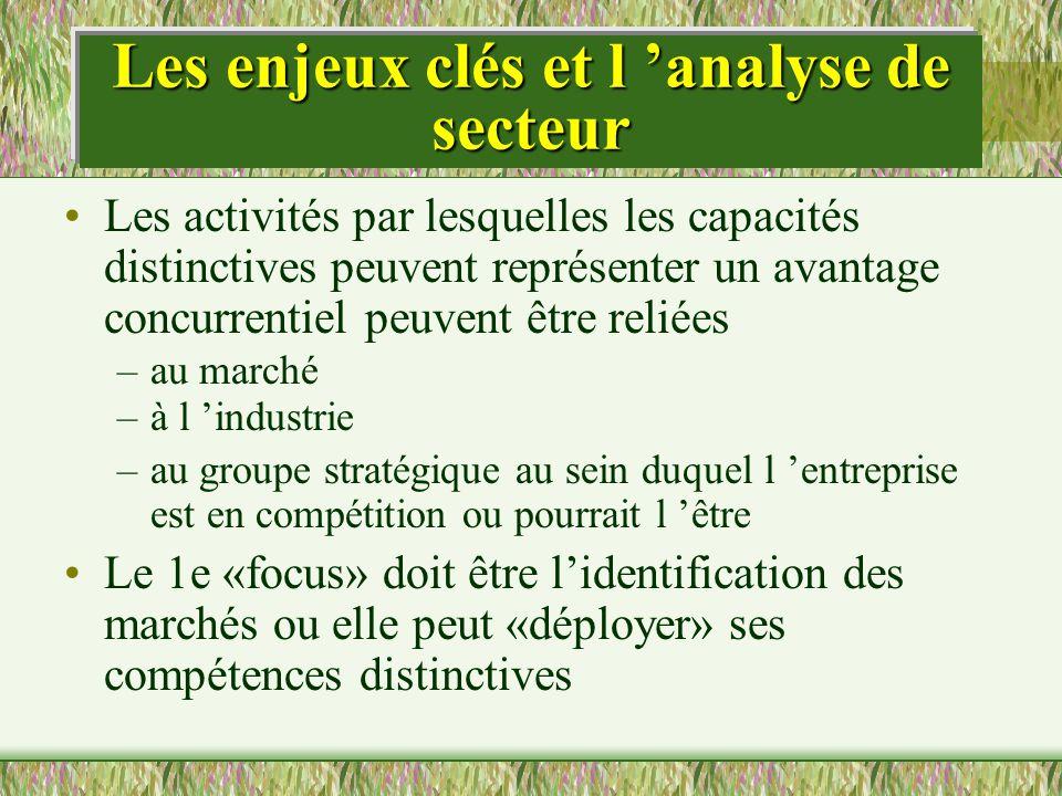 Les enjeux clés et l analyse de secteur Les activités par lesquelles les capacités distinctives peuvent représenter un avantage concurrentiel peuvent