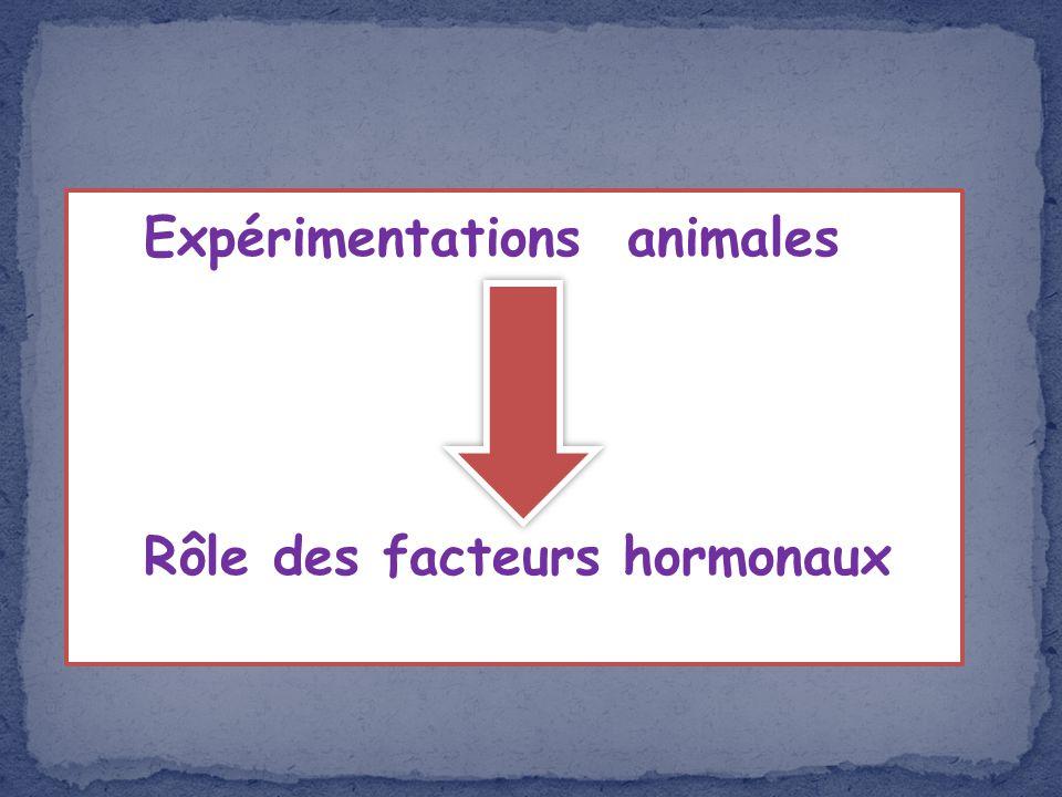 Expérimentations animales Rôle des facteurs hormonaux