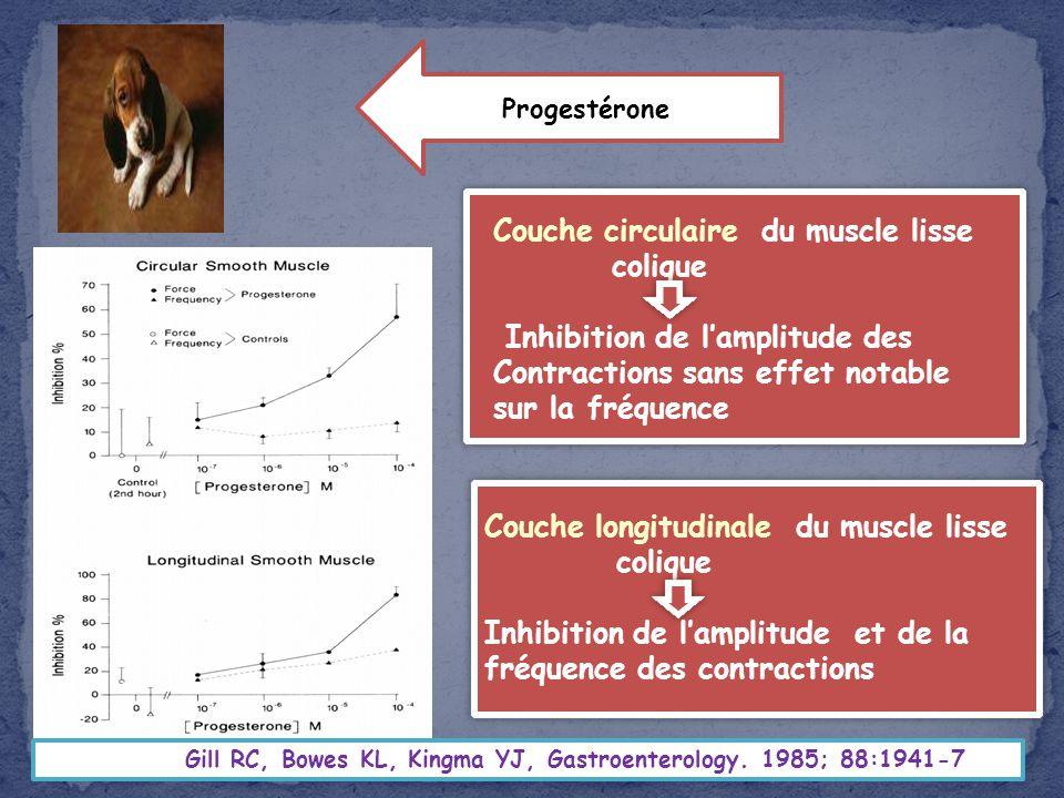 Gill RC, Bowes KL, Kingma YJ, Gastroenterology. 1985; 88:1941-7 Couche circulaire du muscle lisse colique Inhibition de lamplitude des Contractions sa