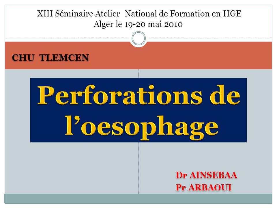CHU TLEMCEN Dr AINSEBAA Pr ARBAOUI Dr AINSEBAA Pr ARBAOUI XIII Séminaire Atelier National de Formation en HGE Alger le 19-20 mai 2010