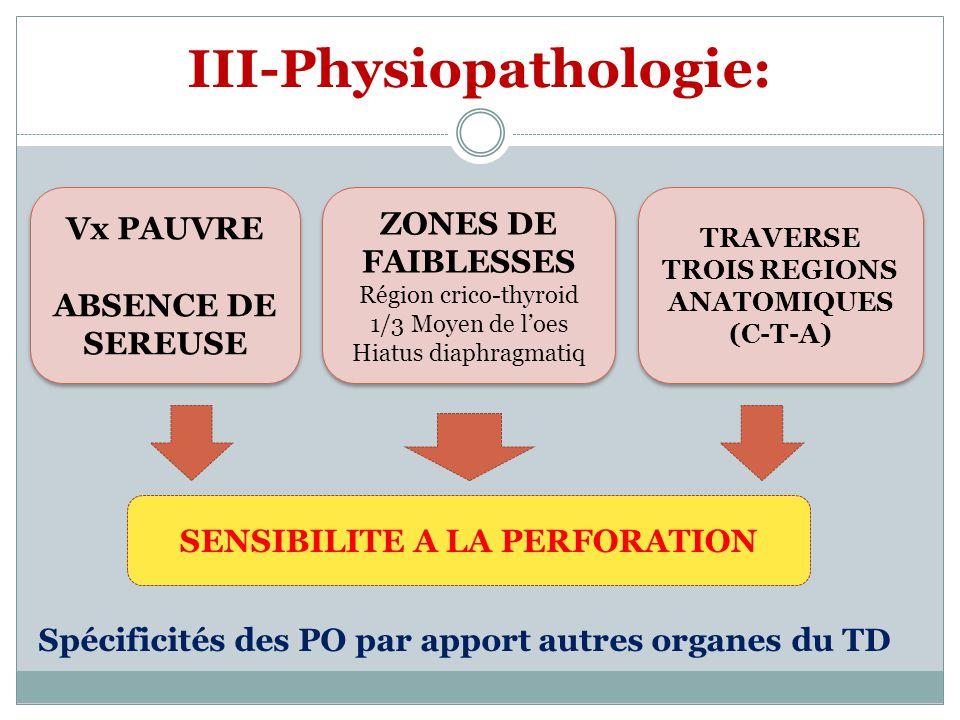 III-Physiopathologie: SENSIBILITE A LA PERFORATION Spécificités des PO par apport autres organes du TD ZONES DE FAIBLESSES Région crico-thyroid 1/3 Mo