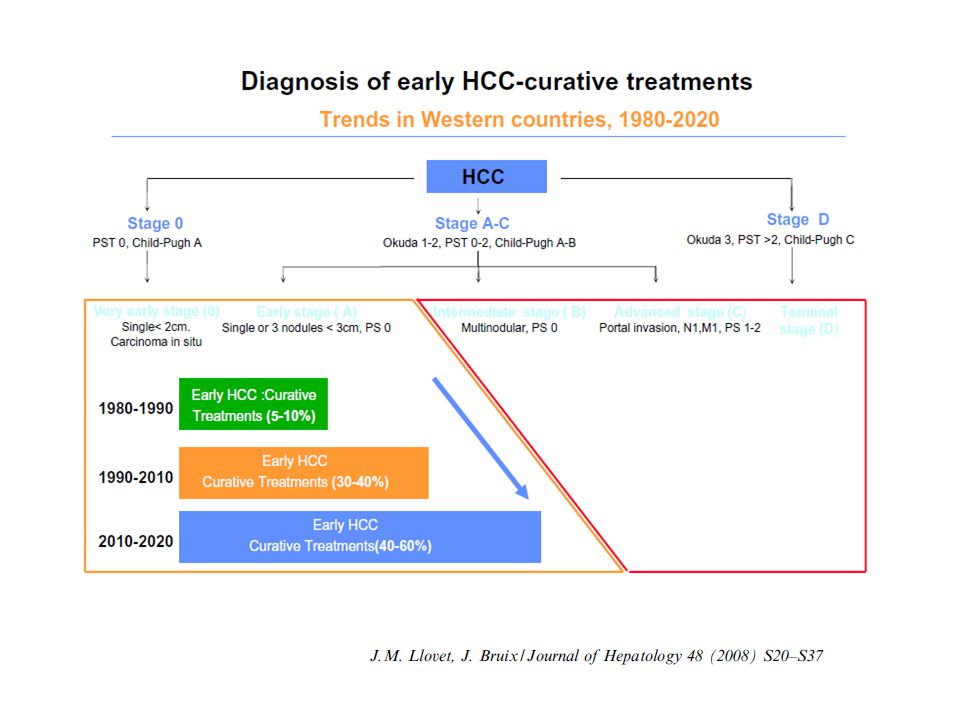 NATURAL HISTORY OF 407 UNTREATED HCC (Multicentric Italian Study Group on HCC) ESTIMATED SURVIVAL RATE OF SINGLE HCC <5 cm (n=131) Livraghi, Bolondi et al, J Hepatol, 1995
