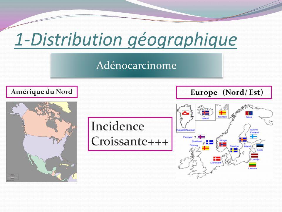 1-Distribution géographique Adénocarcinome Amérique du Nord Europe (Nord/ Est) Incidence Croissante+++