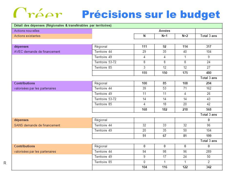 Précisions sur le budget Détail des dépenses (Régionales & transférables par territoires) Actions nouvellesAnnées Actions existantesNN+1N+2Total 3 ans