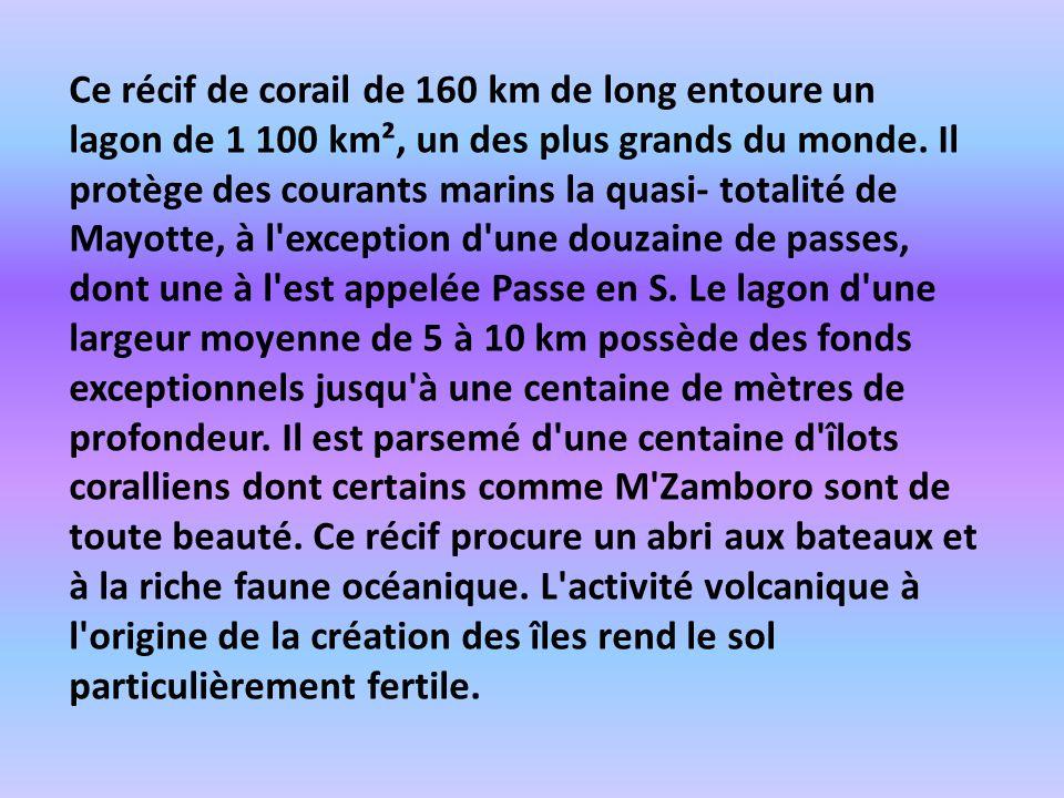 Ce récif de corail de 160 km de long entoure un lagon de 1 100 km², un des plus grands du monde.