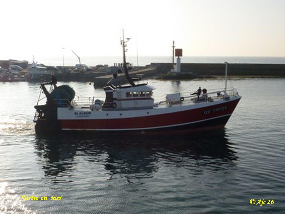 Au loin le port de Brest © Ajc 26