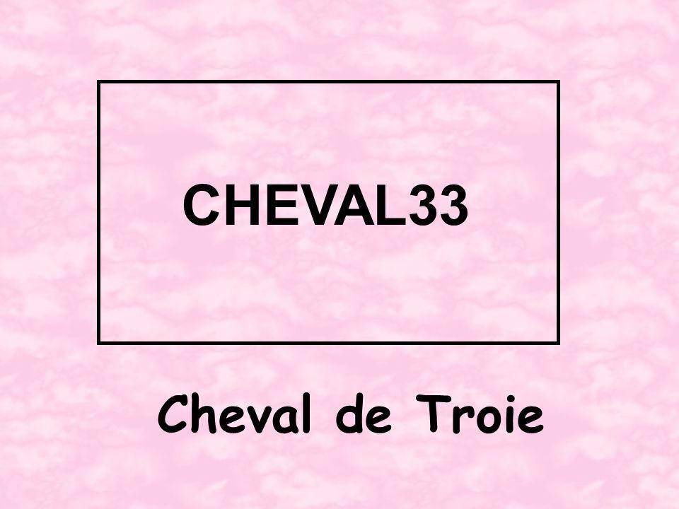 Cheval de Troie CHEVAL33