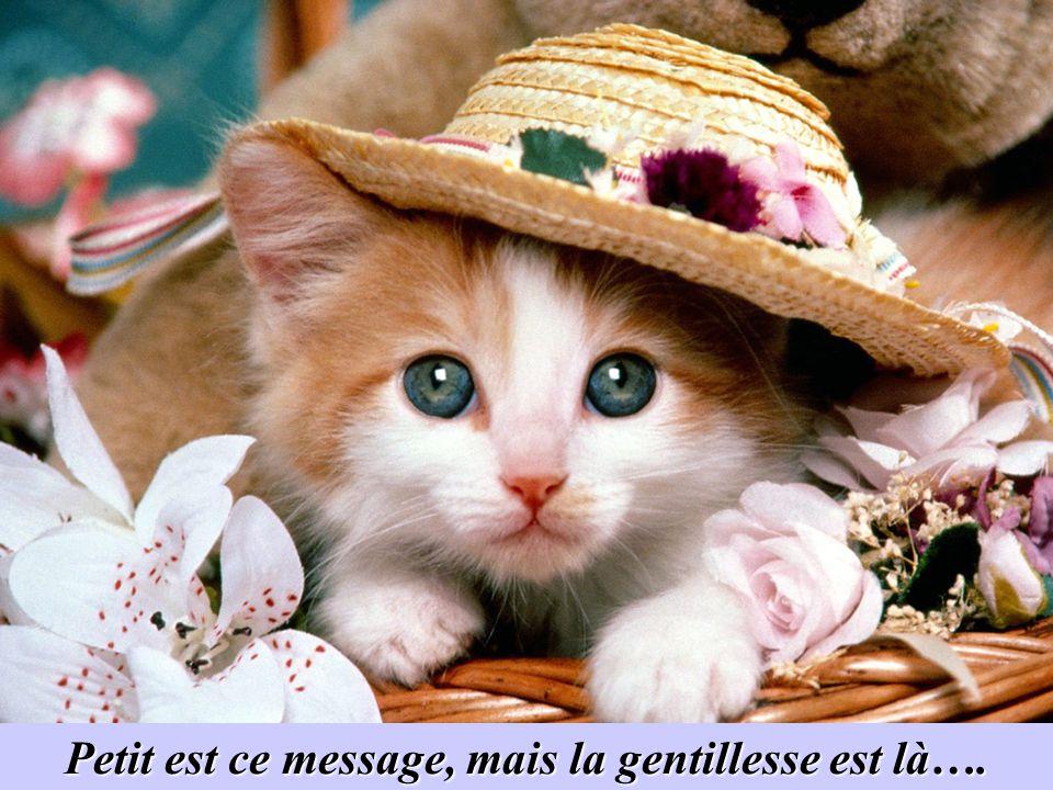 Envoyez ce message aux personnes gentilles que vous noublierez jamais, ainsi quà la personne qui vous la envoyé….