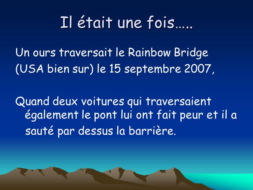 Il était une fois….. Un ours traversait le Rainbow Bridge (USA bien sur) le 15 septembre 2007, Quand deux voitures qui traversaient également le pont