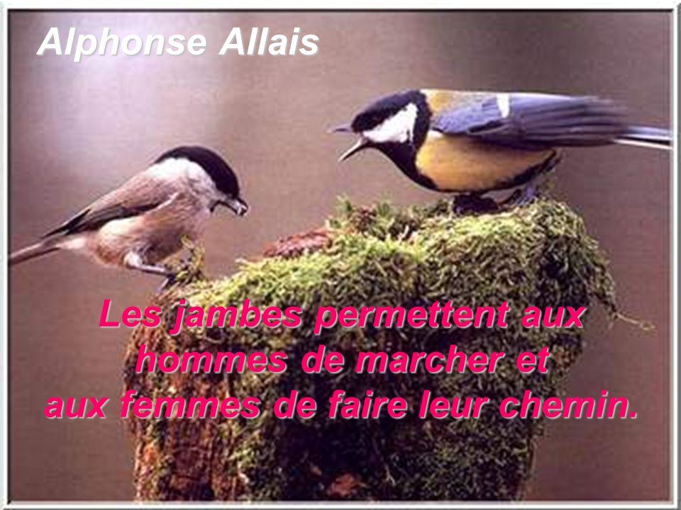 Alphonse Allais Les jambes permettent aux hommes de marcher et aux femmes de faire leur chemin.