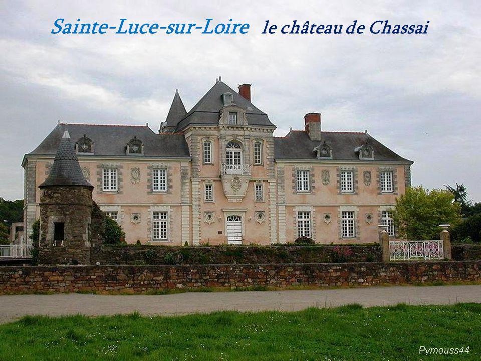 Le Cellier les vignes surplombant la Loire