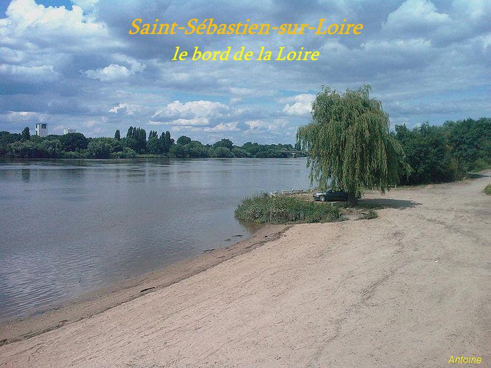 Sainte-Luce-sur-Loire le château de Chassai