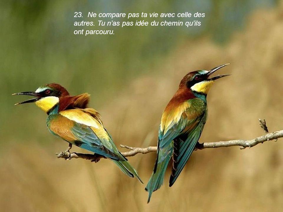 22. Fais la paix avec ton passé, ainsi tu ne ruineras pas ton présent.