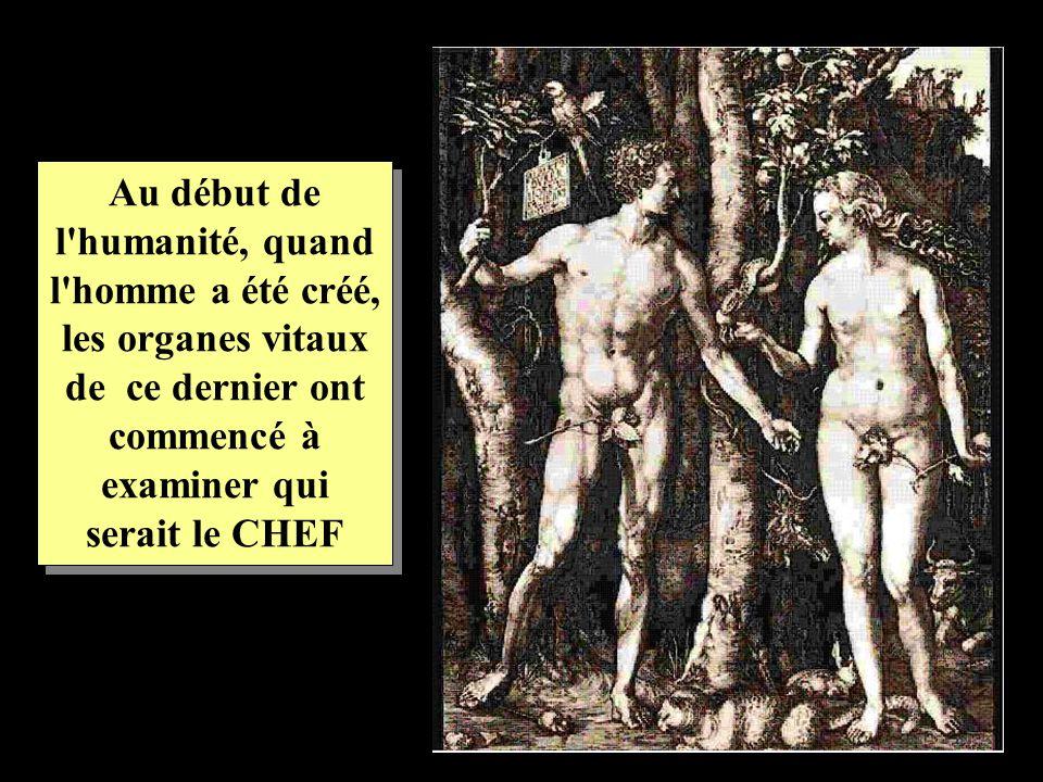 Au début de l'humanité, quand l'homme a été créé, les organes vitaux de ce dernier ont commencé à examiner qui serait le CHEF