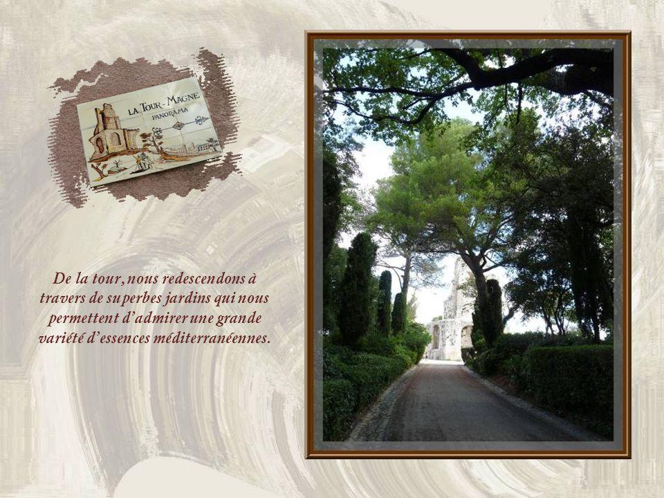 De la tour, nous redescendons à travers de superbes jardins qui nous permettent dadmirer une grande variété dessences méditerranéennes.
