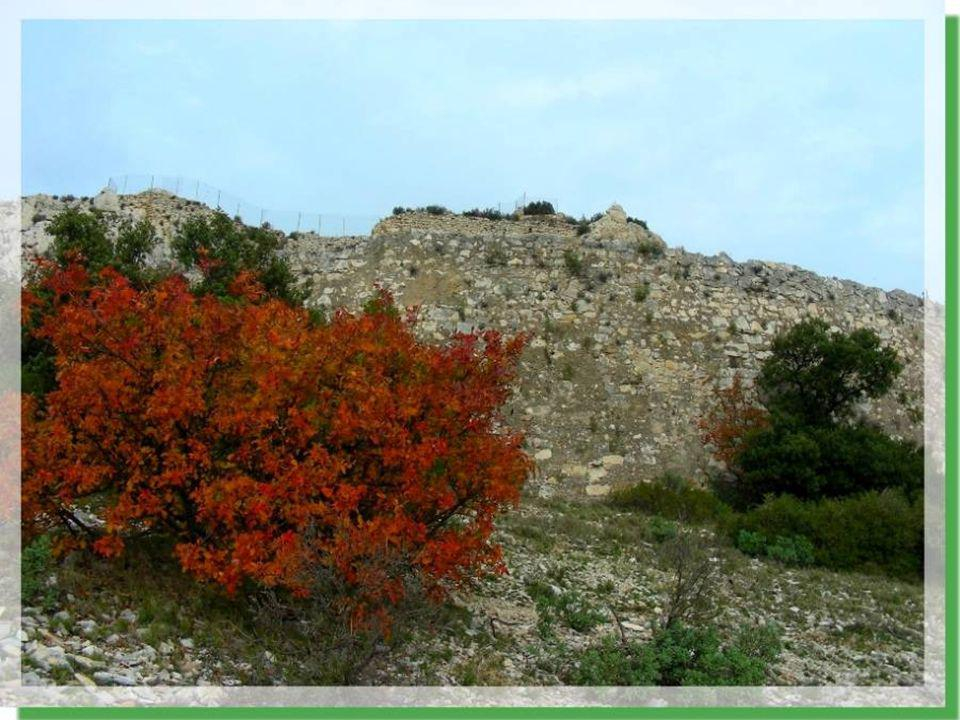 Au moment de limplantation, les particularités rocheuses du site ont été utilisées au maximum.